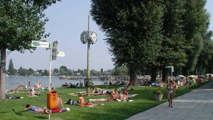 Summer by the Donau