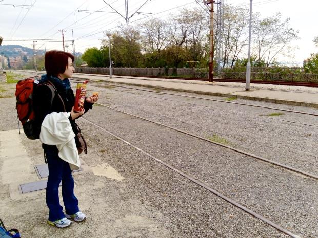 Holly train